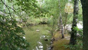 geneve-bois-de-la-batie-parc-aux-animaux