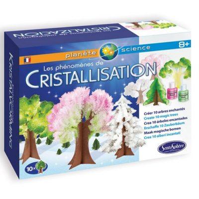 Le Phénomène de Cristallisation